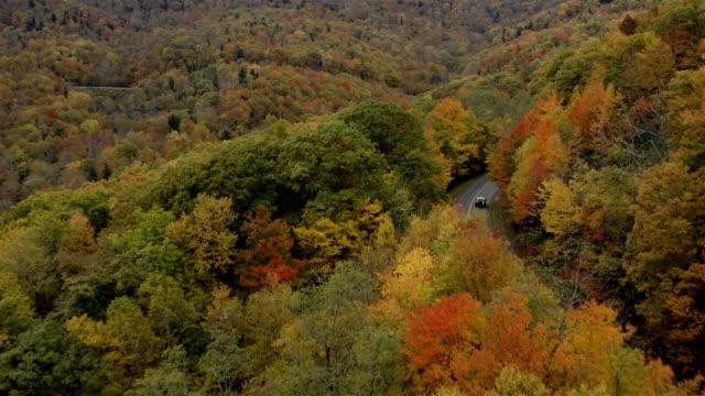 blue ridge parkway in autunno - monti appalachi video stock e b–roll