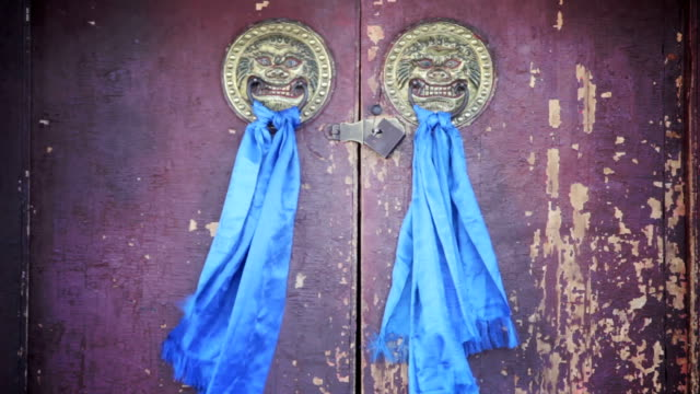 Blue scarves and lion heads. video
