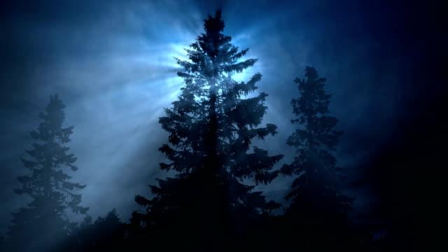 vídeos y material grabado en eventos de stock de fondo de invierno azul y luz estelar - estrella del norte