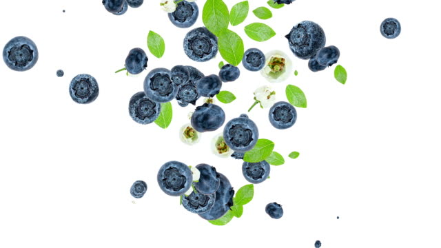 Blueberries falling down and forming a heart video