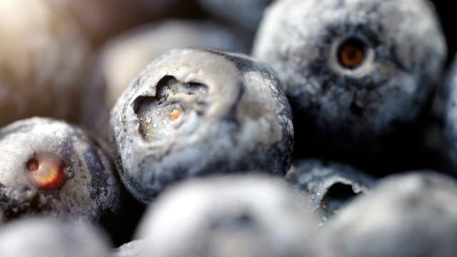Blueberries Water Dripping Slow Macro Pan video