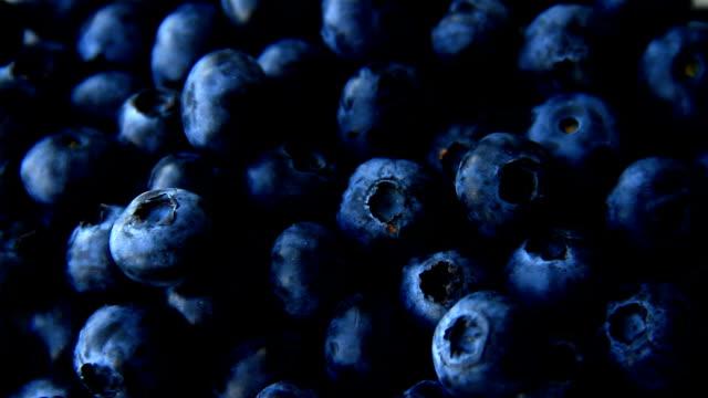 Blueberry full frame use for background video