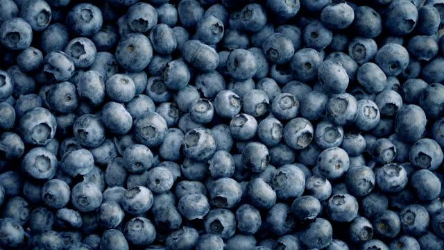 Blueberry Pile Turning Slowly video
