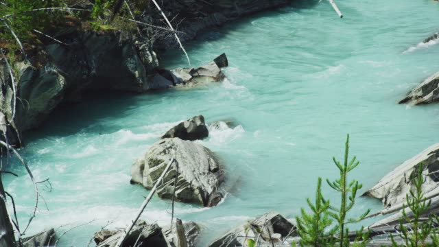 Blue-Green-Colored Water Flows down a Small Stream in the Canadian Rockies under a Sunny Sky