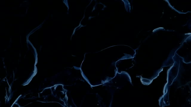 Blue-white Tracings Dance in Black video