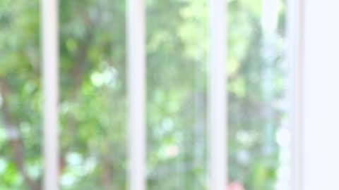 ofis oda pencere bkz bahçe manzaralı aracılığıyla arka plan bulanıklık - background stok videoları ve detay görüntü çekimi