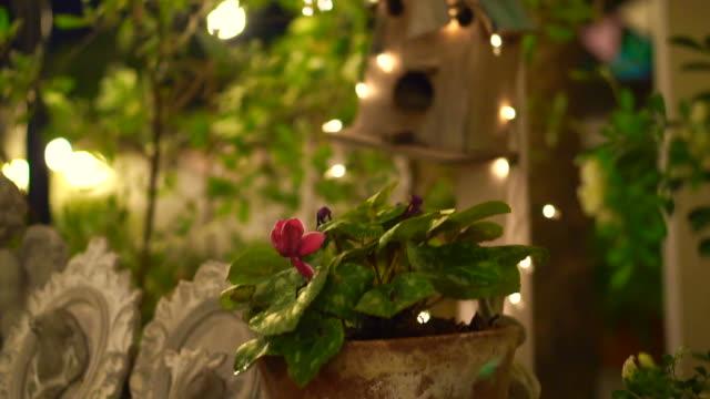 Borrão casamento romântico festival noite luz decorativa ou jantar no jardim - vídeo