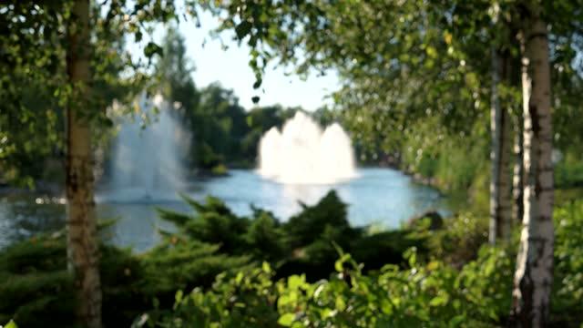 rozmyty staw z fontannami. - staw woda stojąca filmów i materiałów b-roll