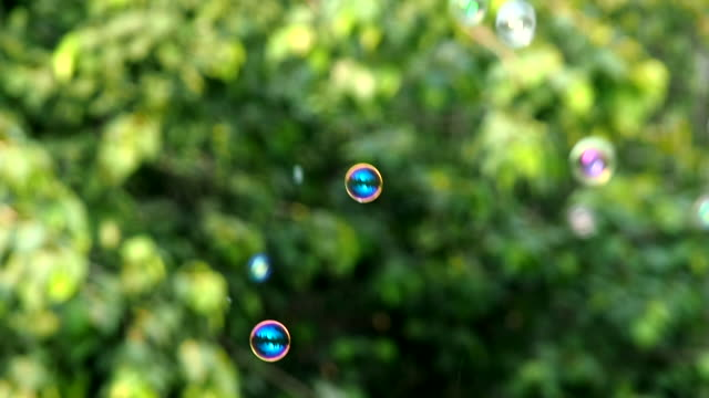 blurred soap bubble flying in the air. - summer background filmów i materiałów b-roll