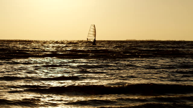 Board with a sail floating on the sea in the evening at sunset video