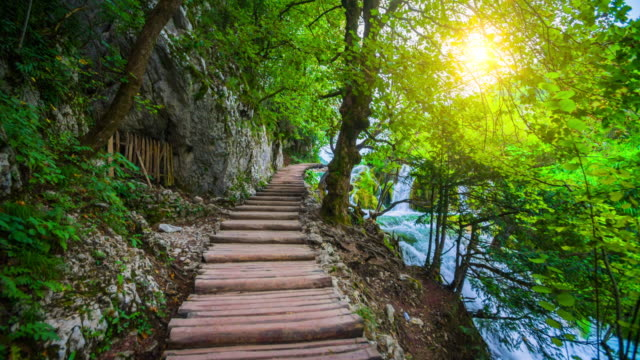 STEADYCAM: Boardwalk through beautiful Nature in Plitvice Lakes National Park, Croatia video