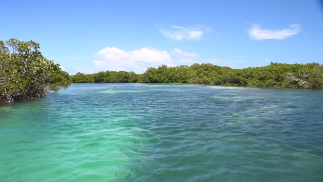 Boat ride through the Key West Backcountry video