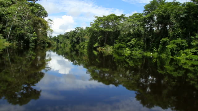 Boat riding in the Peruvian rainforest video