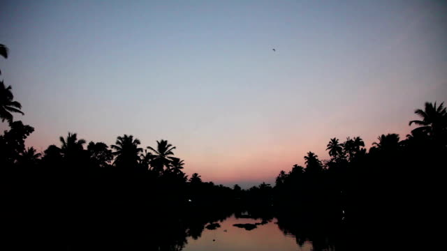 Boating along the Kerala Backwaters before Sunrise video