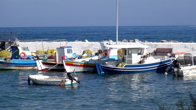 Boats in a Small Jetty video