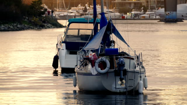 Boats In Pretty Evening Sunlight video