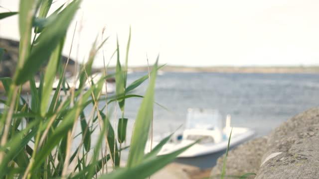 båtar förtöjda till ön - bohuslän nature bildbanksvideor och videomaterial från bakom kulisserna
