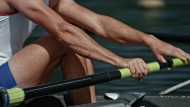 TS Bodies of male athletes in training, rowing in a coxless pair video