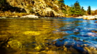 istock Body of mountain river water 463125307