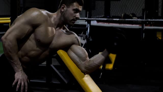 bodybuilder 운동 및 웨이트 - 보디 빌딩 스톡 비디오 및 b-롤 화면