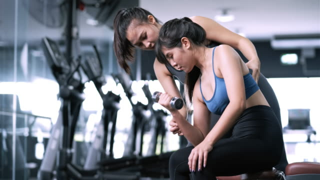 vídeos de stock e filmes b-roll de bodybuilder of women training with dumbbell exercise workout at fitness gym in sportswear with personal trainer coaching, sportive healthy bodybuilding muscle, athlete lifestyle concept. - gmail