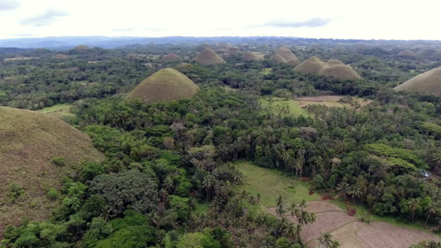 Bohol chocolate Hills video