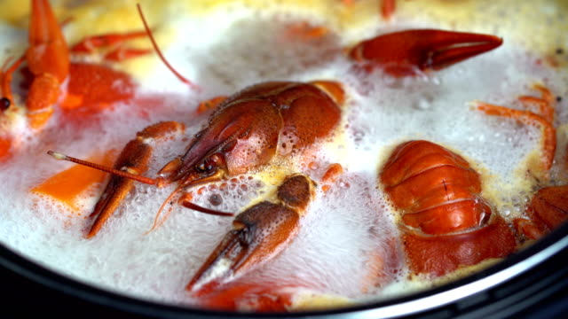 boiling crayfish at saucepan - bollente video stock e b–roll