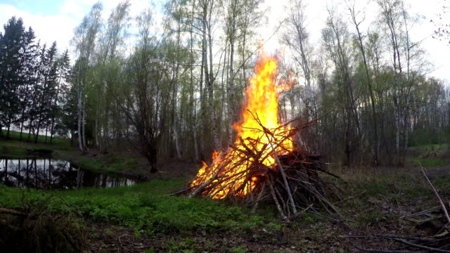Bonfire burning by the pond on spring evening, time lapse Bonfire burning by the pond on spring evening with a farmer walking by, time lapse weeding stock videos & royalty-free footage