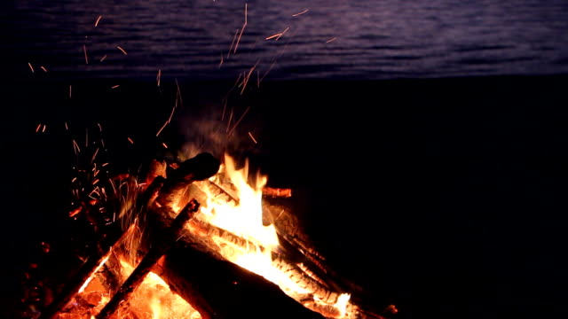 Bonfire burning on the river bank at night video