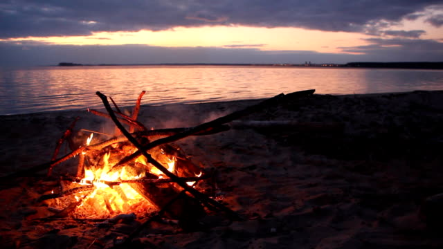 Bonfire burning on the riverbank  on the sunset video