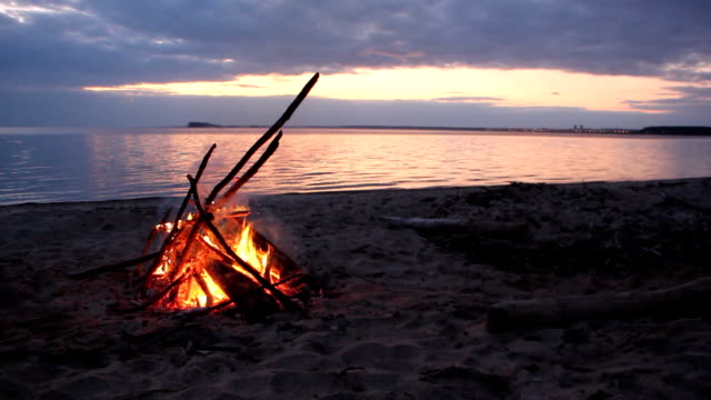 Bonfire burning on the riverbank  on the sunset - video