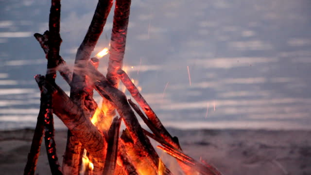 bonfire burning on the riverbank  on the sunset - falò spiaggia video stock e b–roll
