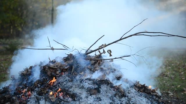 lagerfeuer auf dem hof rauchende - grundstück stock-videos und b-roll-filmmaterial