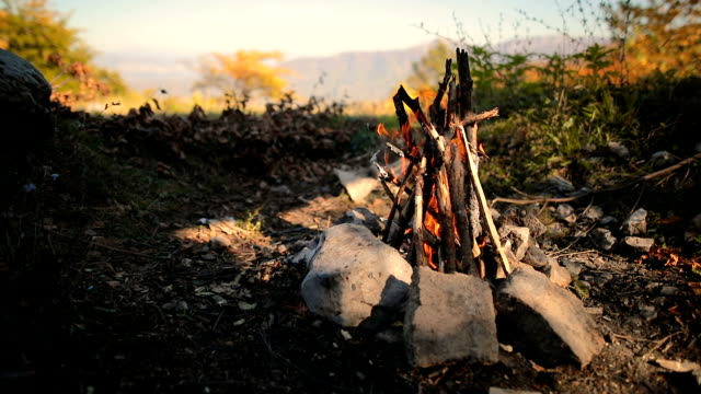 brasa i hålet, trä och stenar i skogen - bål utomhuseld bildbanksvideor och videomaterial från bakom kulisserna