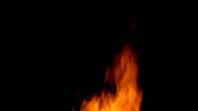 bonfire on the black background video