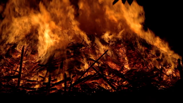 Bonfire video