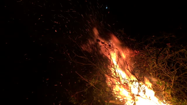 Bonfire with glowing embers and hot ash. video