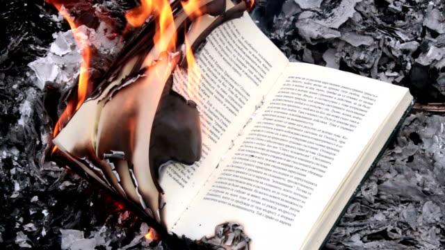 vídeos de stock e filmes b-roll de book burning, timelapse - cinza