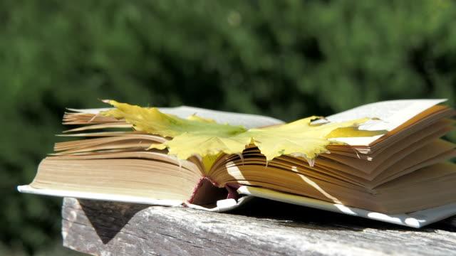 stockvideo's en b-roll-footage met boeken in het najaar park. - literatuur