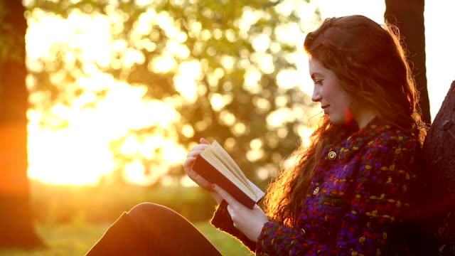 vídeos y material grabado en eventos de stock de amantes de libro - libro