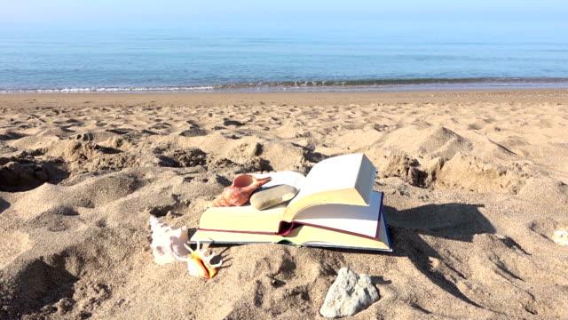 stockvideo's en b-roll-footage met boek op het strand en de sand - literatuur