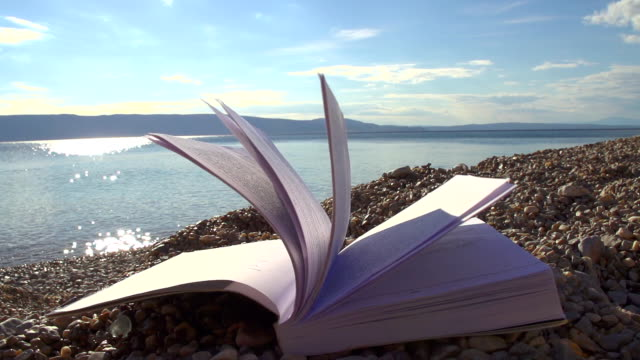 HD SUPER SLOW MO: Book On The Beach video