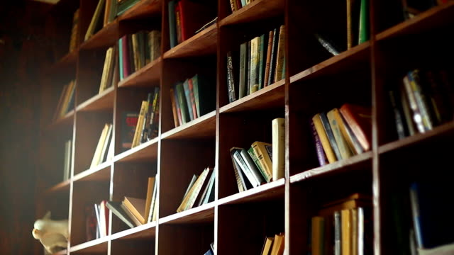 Bookshelves in university library with lots of books video