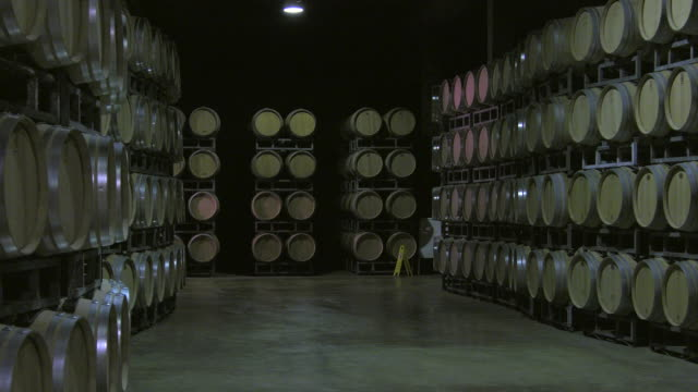 Bordeaux Saint Emilion bottling unit video