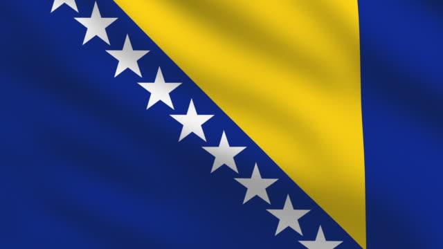 ボスニアヘルツェゴビナ国旗 - ボスニア・ヘルツェゴビナ点の映像素材/bロール
