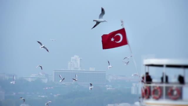 Bosphorus video