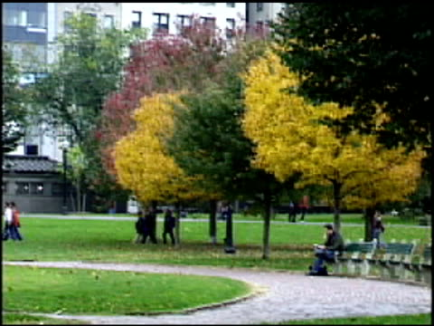 Boston Park in Fall video