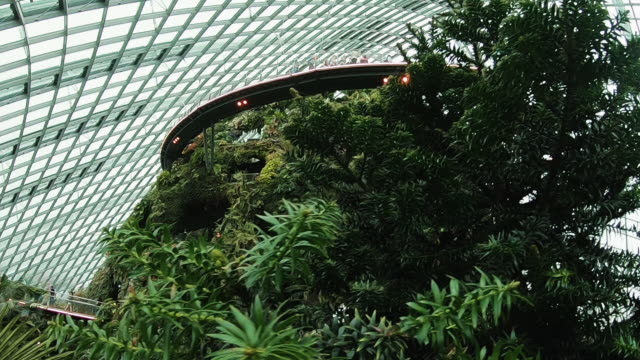 botanical garden of singapore. - singapore architecture stock videos & royalty-free footage