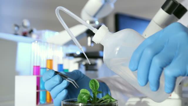 Botanical Lab Experiment video