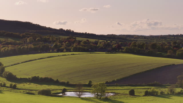 botolphs, west sussex - drone shot - south downs video stock e b–roll